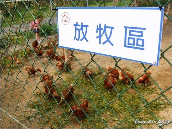 福壽生態農場